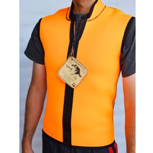 Vault Vest Ingravity dog