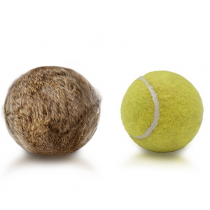 Rabbit Tennis Ball