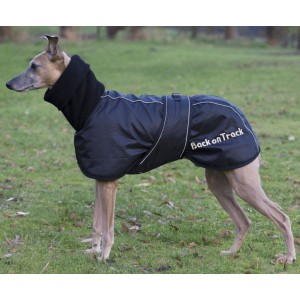 Cappottino Whippet
