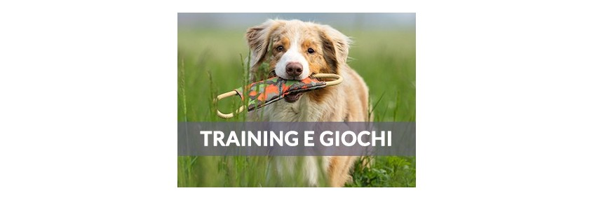 Training/Giochi